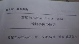 DSC_1633.JPG